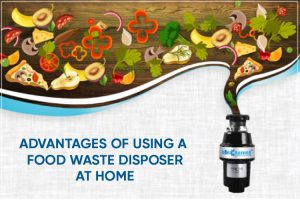 What is Food Waste Disposer Machine   Advantages of Using a Food Wet Waste Disposer at Home