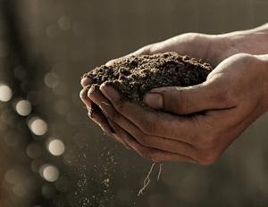 BinCrusher - Organic Compost