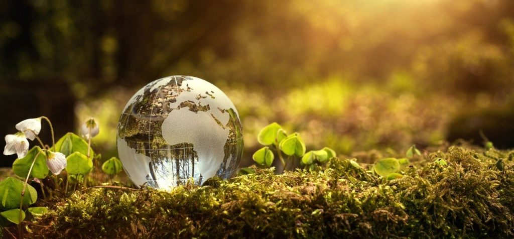Setting Environmental Targets For Your Business & At Home