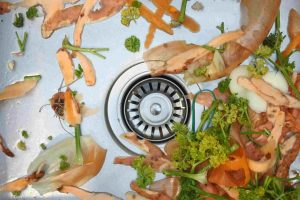 Things to keep in mind while using a Food Waste Disposer